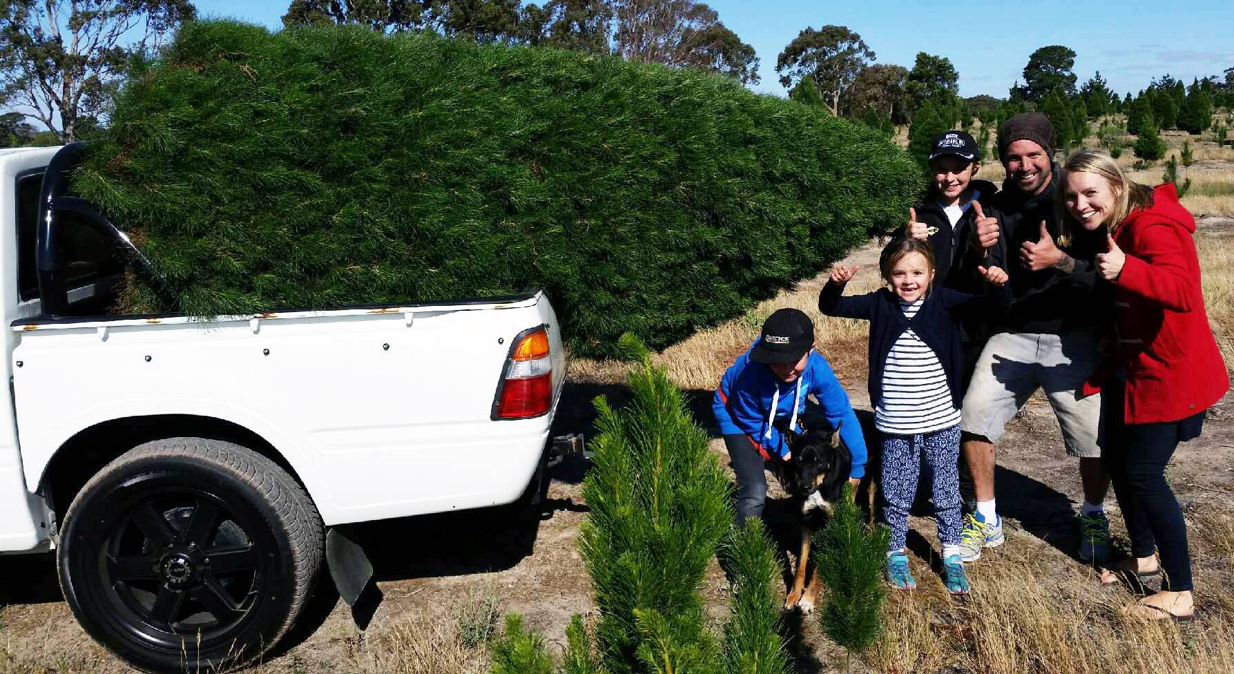 Happy Family with the Perfect Tree