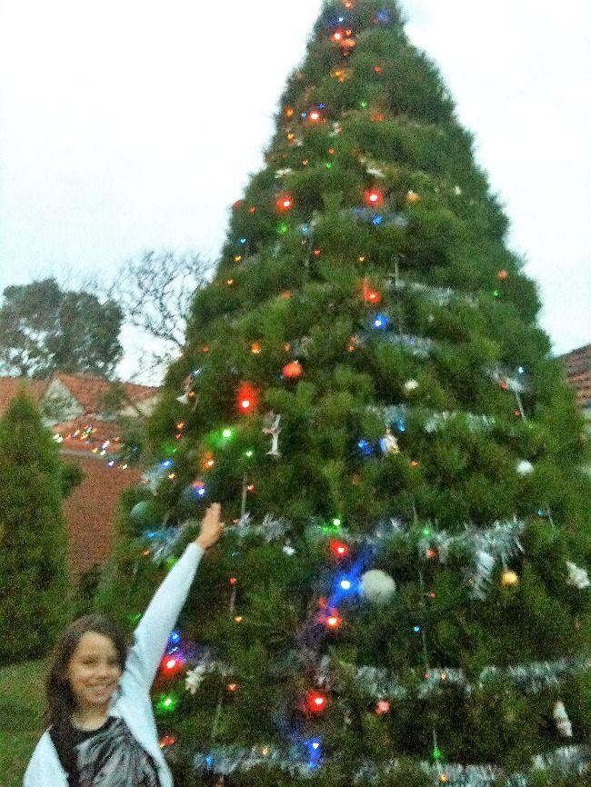 15ft christmas tree