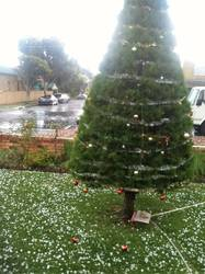 Snowing in Coburg